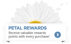 You receive valuable rewards points with every purchase!