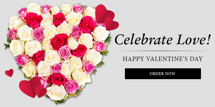 Flower delivery evansville in best value